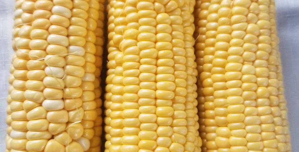 Preserving Corn July 19, 2020