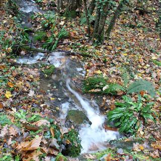 riviere-parc-domaine-la-mazure.jpg