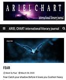 Ariel Chart (2).PNG