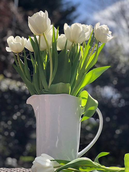 Capri pitcher