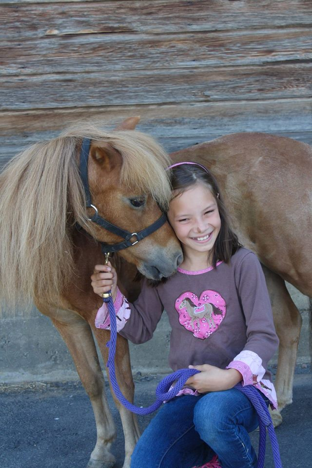 HorseHeart