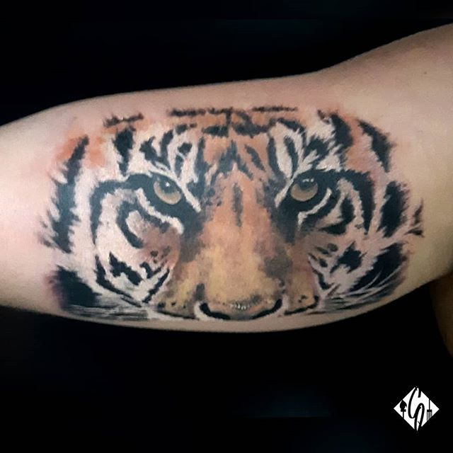 Realistic tiger tattoo_#ink #inked #patr