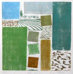 Green Spaces - Woodcut - AP