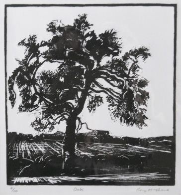 Oak - Woodcut - AP