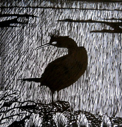 Shag of a day - Print  from pen & ink dr