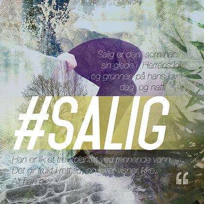 Salig  /// Sal. 1