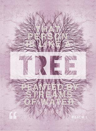 Like a tree  /// Sal. 1