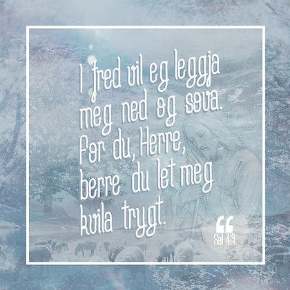 Kvila trygt /// Sal. 4.9
