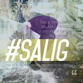SAL. 1