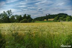 Kugelsburg im Sommer