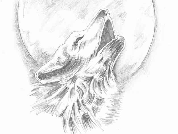 Pencil - Dog & Moon Sketch