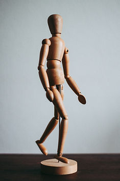 Anatomical wooden figure standing upright