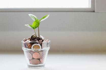 Coins in a glass cup with a sprout growing out