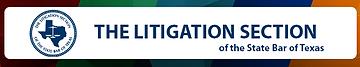 Litigation Section.png