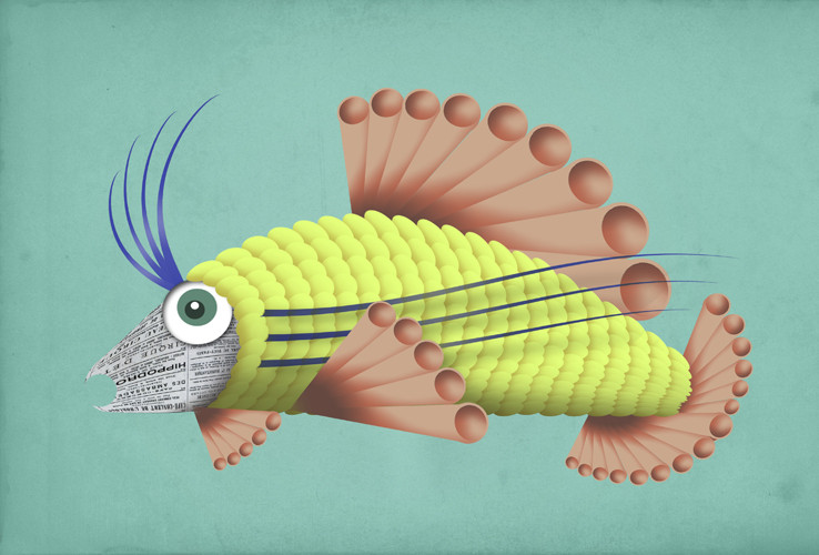 fish 17.jpg