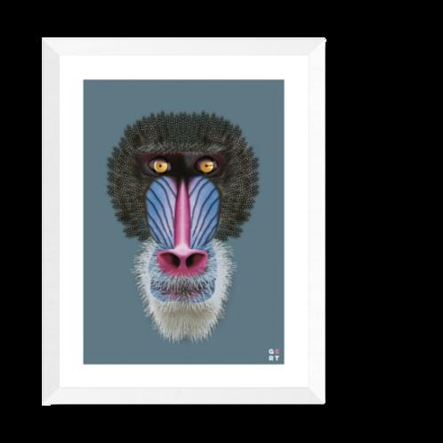 Artprint 'Mandrill'