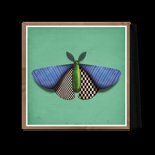 Artprint 'Baptiste de Papillon de Nuit'