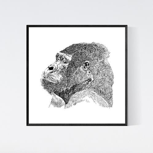 Artprint 'Gorilla'