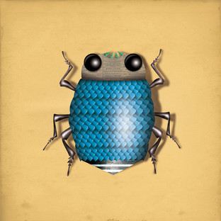 INSECT 07.jpg