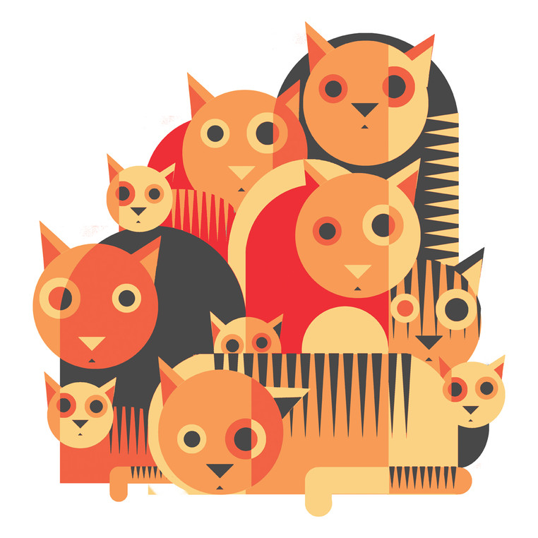 graphical cats orange and grey S.jpg