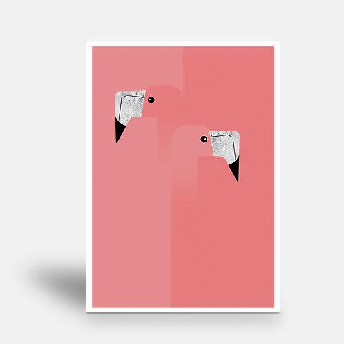postcard 'flamingo'