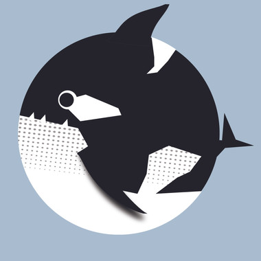 Whale - orca.jpg