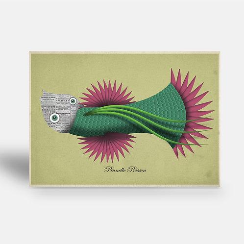 postcard 'Prunelle Poisson'