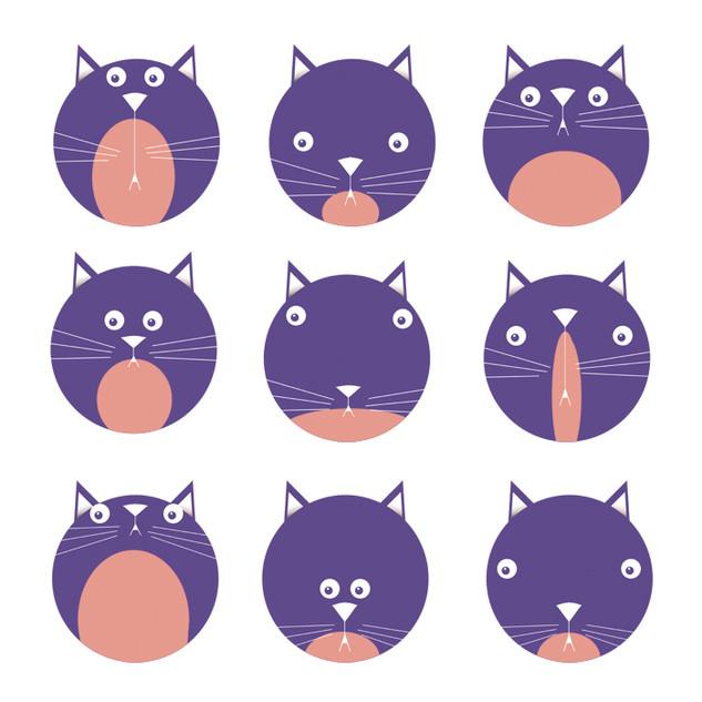 9 CATS 1.jpg