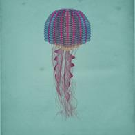 2020 004 jellyfish square 2s.jpg