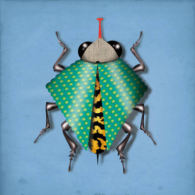 INSECT 06.jpg