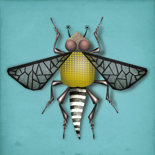 INSECT 03.jpg