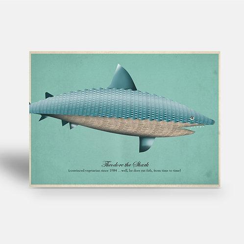 postcard ' Theodore the shark'
