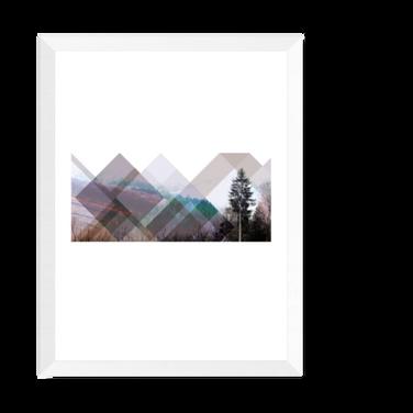 nordik - skogen