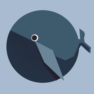 Whale - vinvis.jpg