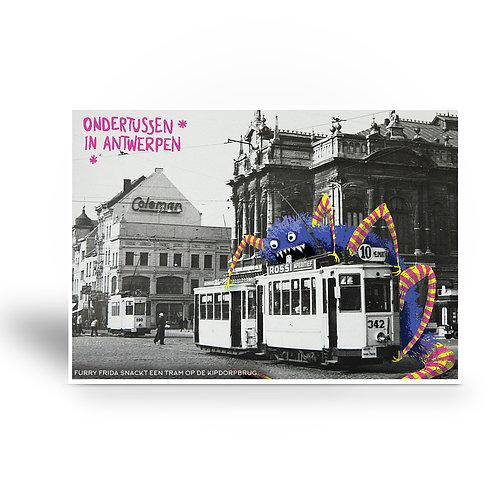 postcard 'Ondertussen in Antwerpen - Furry Frida'