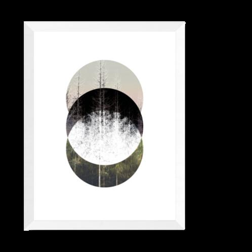 Artprint 'Nordik - Barrtäd'