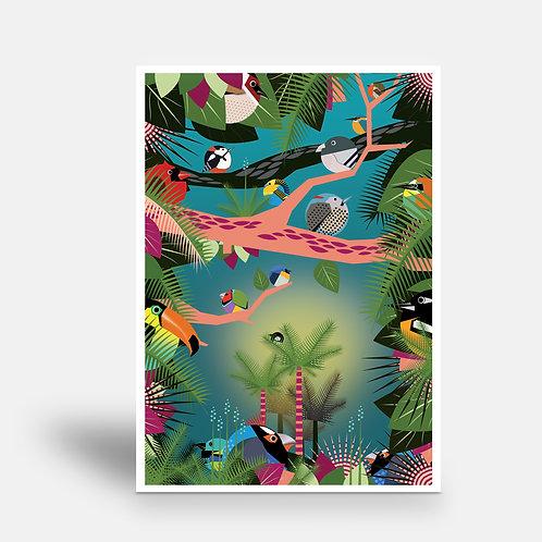 postcard 'Amazonia 2'