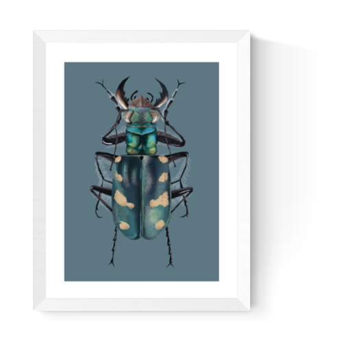 Artprint 'Dune Tiger Beetle'
