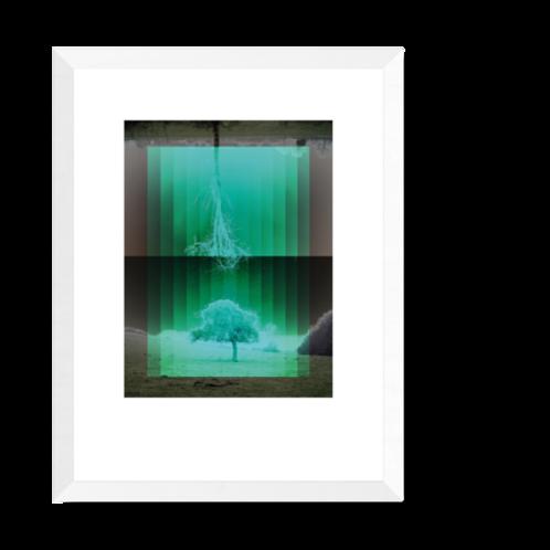 Artprint 'Nordik - Träd'