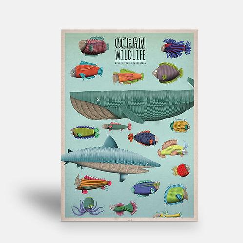 postcard 'Ocean Wildlife'