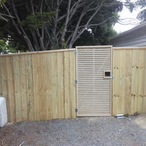 Butted Paling Fence with Trellis Gate