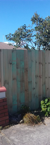 New Butted Paling Front and Single Overlap Side Fence