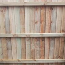 Single Overlap Paling Fence
