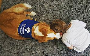 La médiation animale auprès d'enfants victimes ou comment un binôme psychologue-chien peut accom