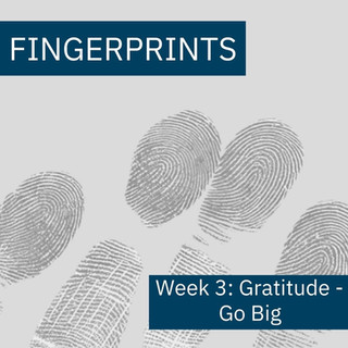 Fingerprints Gratitude Week 3: Go Big
