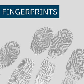Fingerprints Intro