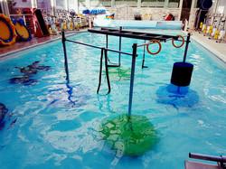 aquatic pole cage