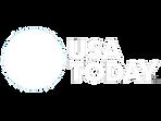 USA-Today-logo-white.png