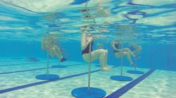 aquatic pole