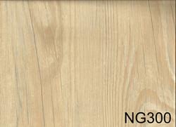 NG300